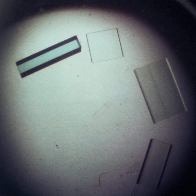 Cu,Zn superoxide dismutase (SOD) crystals
