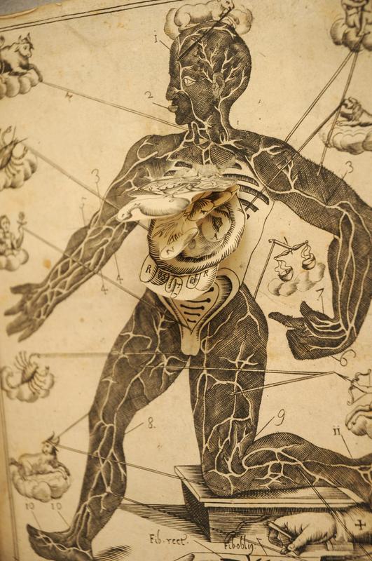 Francesco Minniti, Armonia astro-medico-anotomica, 1690.