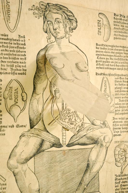 Heinrich Vogtherr, Anothomia, oder abconterfettung eines Weybs leyb / wie er innwendig gestaltet ist,1539.
