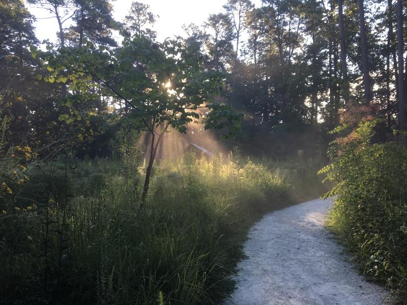 Blomquist Gardens Prairie