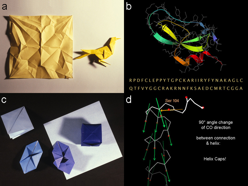 Origami, protein folding, and helix caps