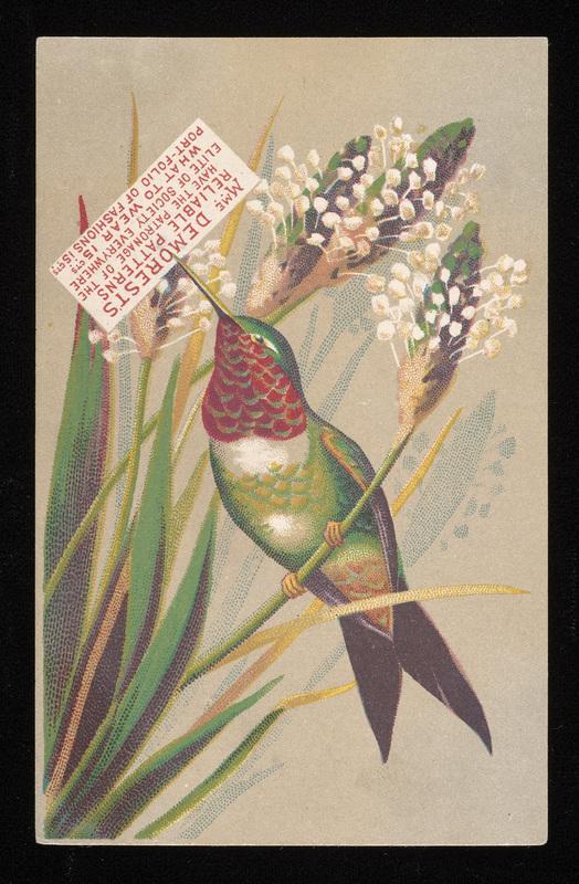 http://collections-01.oit.duke.edu/digitalcollections/exhibits/baskin/trades/demorest_baxst001097001.jpg