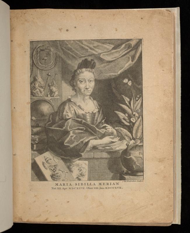 http://collections-01.oit.duke.edu/digitalcollections/exhibits/baskin/1700s/1718_merian_baxst001015001.pdf
