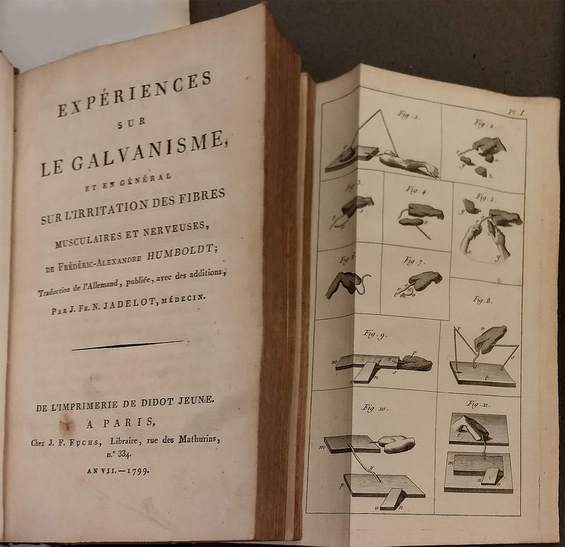Expériences sur le Galvanisme, et en Général sur L'irritation des Fibres Musculaires et Nerveuses, de Frédéric-Alexandre Humboldt