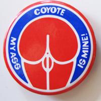 coyotebutton1