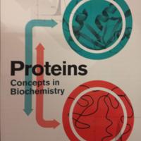 Almeida 2016 Proteins: Concepts in Biochemistry