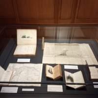 Forever Humboldt Exhibit Big Case
