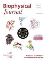 Biophysical Journal cover, 2014