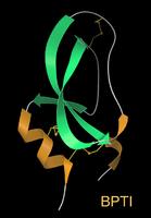 Basic pancreatic trypsin inhibitor (BPTI)