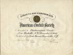 Certificate, Phalaenopsis Doris, American Orchid Society, December 8, 1945