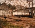 Construction of Display Gardens, 1958