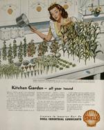 Shell gasoline, 1950s.